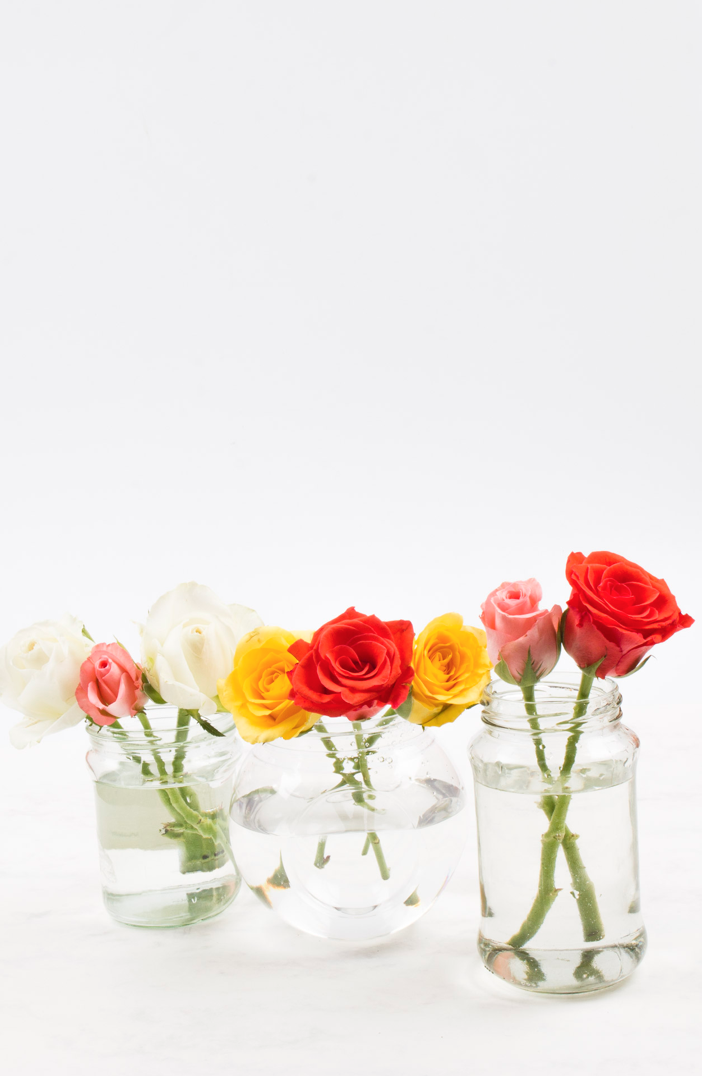 3 Quick Flower Arrangements with everyday objects at home- mugs, old glass jars and food tins. Click through for the details and how to make your own sweet and inexpensively expensive- looking flower arrangements!