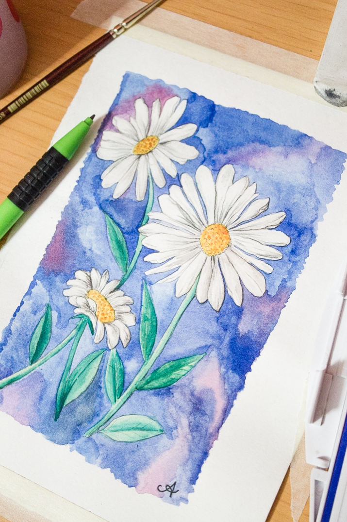 Things To Paint draw + paint a daisy in watercolour – surely simple