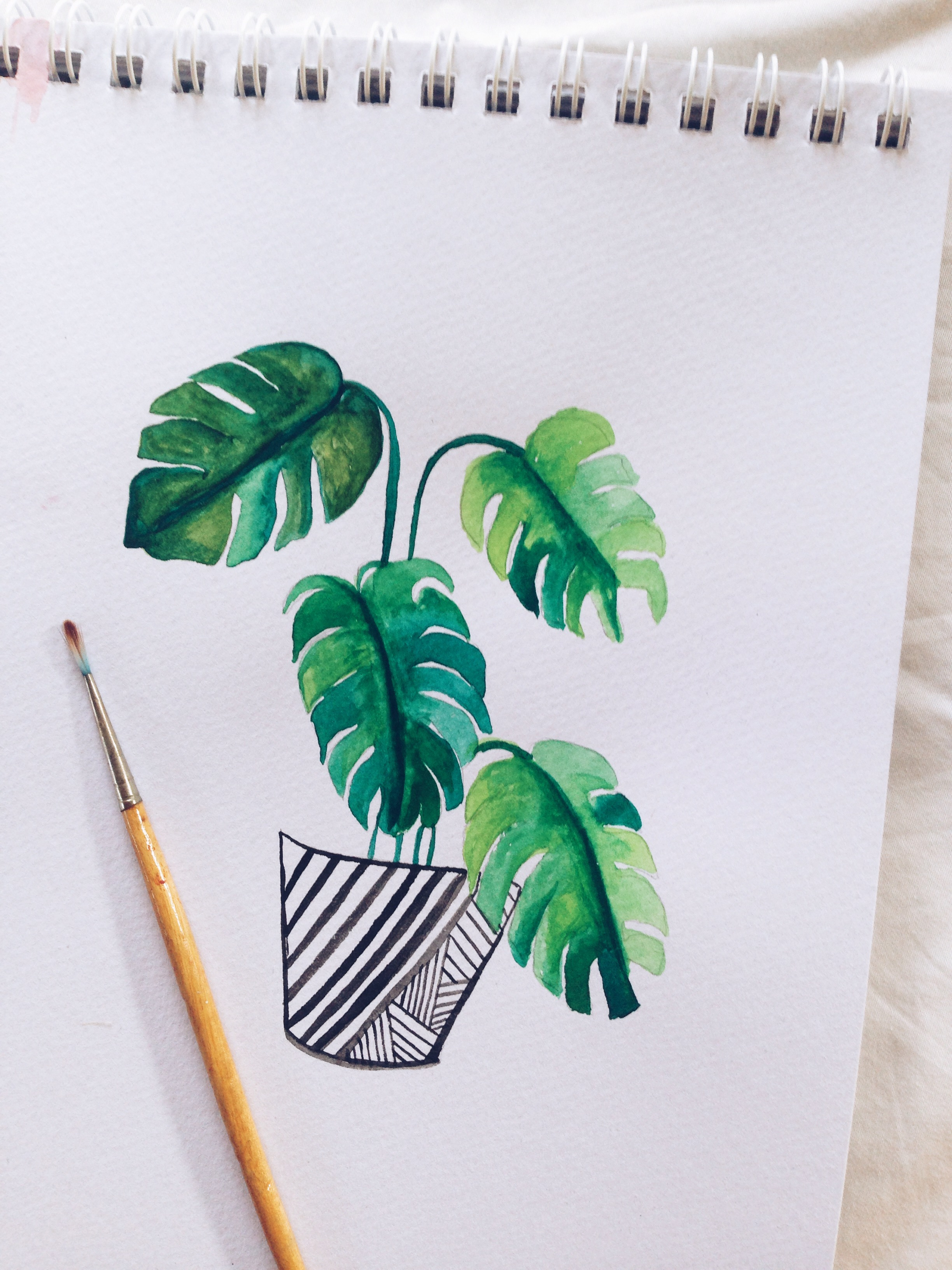 Watercolour process video monstera surely simple for Easy watercolour projects