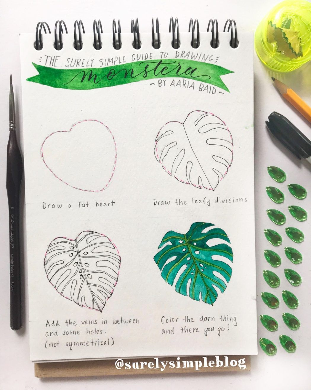 How To Draw Monstera Deliciosa Plant Surely Simple